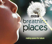 BBC Breathing Spaces: Project Photographer